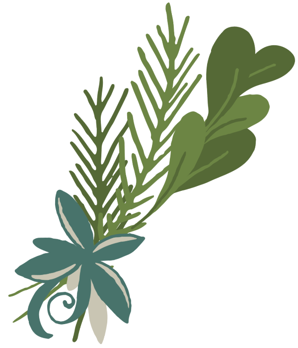 Decorative image of a leaf