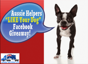 """LIKE YOUR DOG"" AUSSIE HELPERS FACEBOOK GIVEAWAY APRIL 2014"